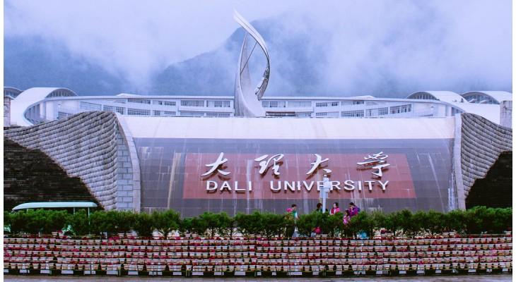 Dali University Scholarship