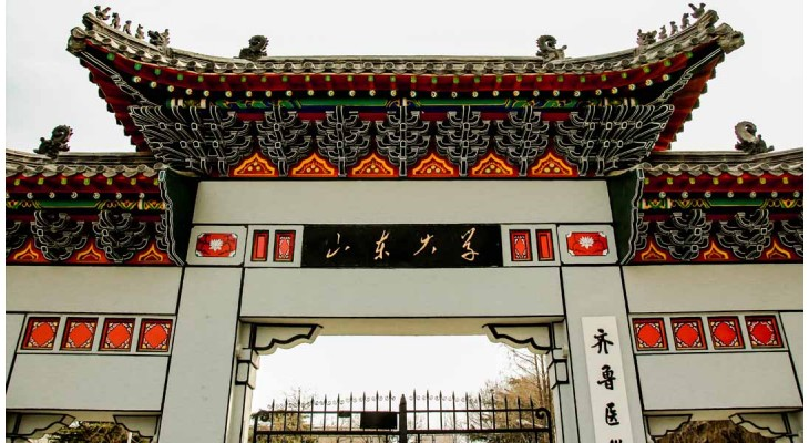 Shandong University Freshman Scholarship